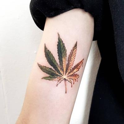 planta de cannabis tattoo