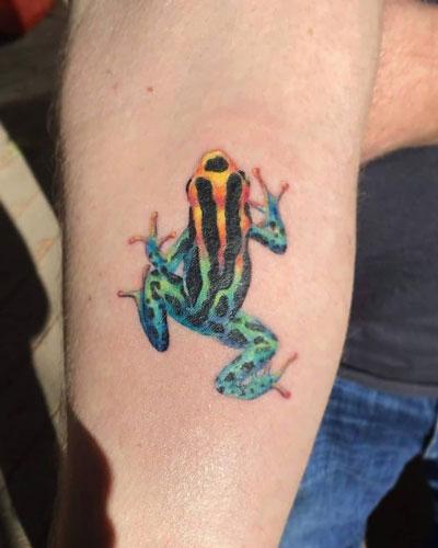 tatuaje rana colores