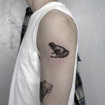 tattoo negro y gris Rana
