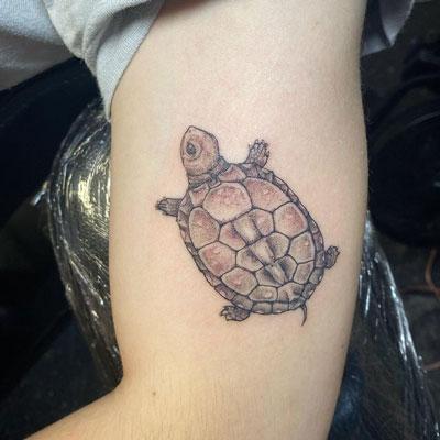 tortuga de tierra tattoo