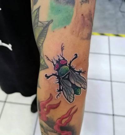 tattoo a color de mosca