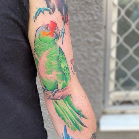 tatuaje de loro