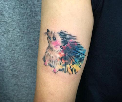 tatuaje erizo colores