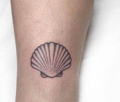 tattoo de concha marina